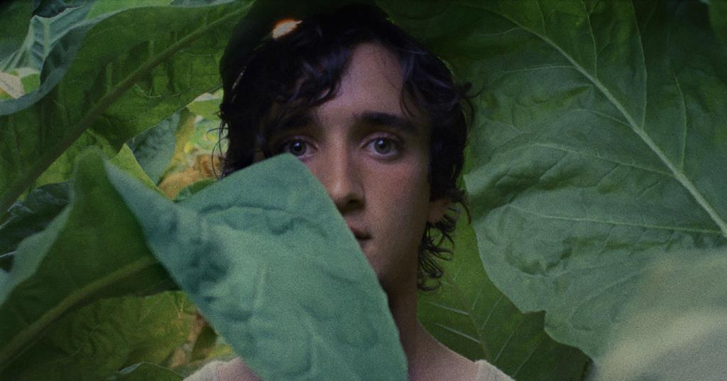 1282610 happy as lazzaro c cannes competition.