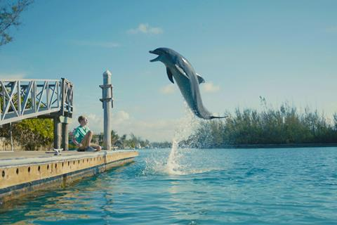 Dolphin kick epic pictures