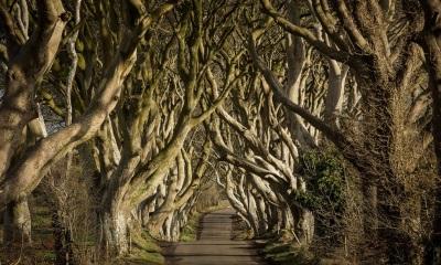 Game Of Thrones Northern Ireland